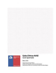 Guías Clínicas AUGE Gran Quemado