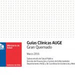 Guías Clínicas AUGE Gran Quemado Marzo 2016