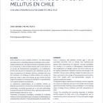 EPIDEMIOLOGÍA DE LA DIABETES MELLITUS EN CHILE